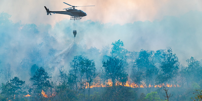 home wildfire damage risk
