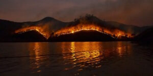 2021 Wildfire Safety and Prevention Tips for Community Preparedness